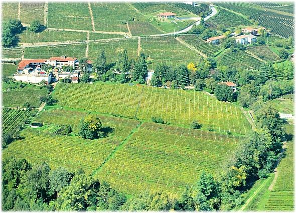 Casa Vinicola Agriturismo Gallina Santo Stefano Belbo -Vista aerea